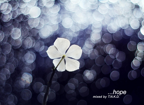 T.N.K.D! …hope